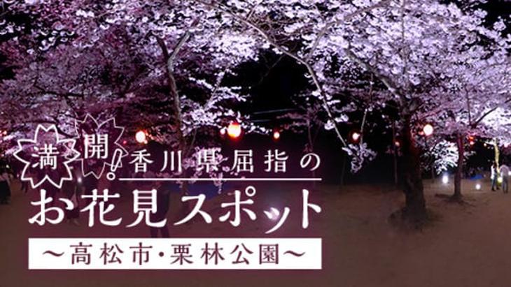 VR動画:満開!香川県屈指のお花見スポット ~高松市・栗林公園~