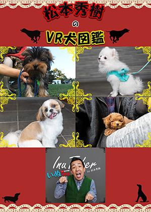 VR動画:松本秀樹のVR犬図鑑!小型犬パピー編(ヨークシャー・テリア、ポメラニアン、シー・ズー、トイ・プードル)