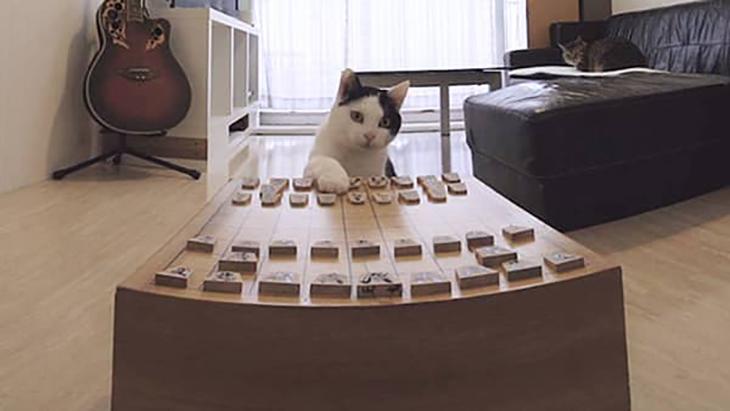 #9 オヤツを賭けて将棋対決!のはずが… / ぶるる・べるる:2枚目