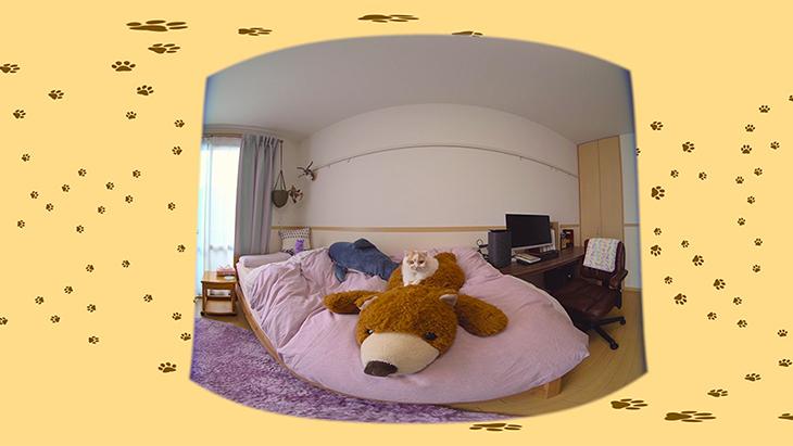 #7 クマのヌイグルミ with ホイちゃん / 愛されカワイイ猫 ホイップちゃん:1枚目