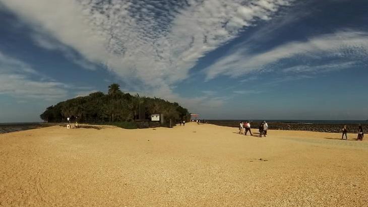 宮崎県 青島海岸周辺風景:3枚目