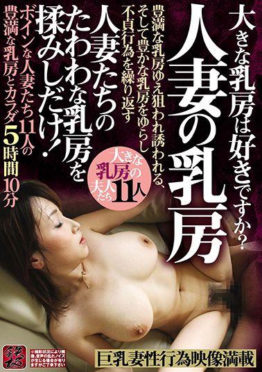 人妻の乳房 大きな乳房は好きですか? ボインな人妻たち11人の豊満な乳房とカラダ5時間10分 人妻たちのたわわな乳房を揉しだけ!