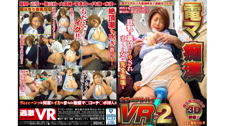 Adult VR Videos:電マ痴漢 VR 2